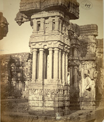 Carved pillars from a ruined mandapa in the Narasimha Temple, Ahobilam 2629